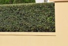 Austinmer Decorative fencing 30